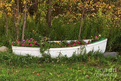 Photograph - Flower Boat by Les Palenik
