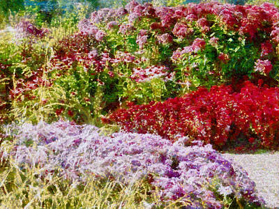 Photograph - Flower Border Waves by Dorothy Berry-Lound