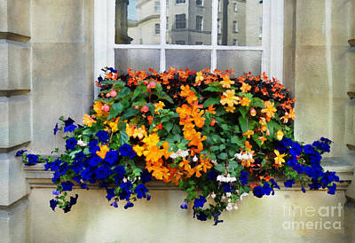 Photograph - Flower Box In Bath by Judi Bagwell