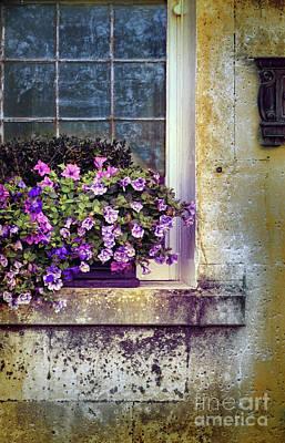 Photograph - Flower Box by Jill Battaglia