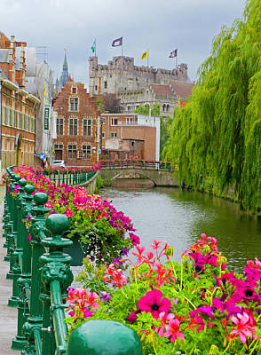 Photograph - Flower Boxes Along The Canal by David Freuthal