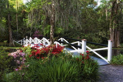 Photograph - Flower Bridge by Ken Barrett