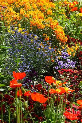 Photograph - Flower Carpet 3 by Rudi Prott