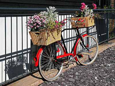 Photograph - Flower Delivery Bicycle by Gill Billington