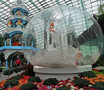 Photograph - Flower Dome 20 by Ron Kandt