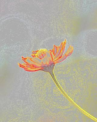 Photograph - Flower Drawing by Ellen Barron O'Reilly
