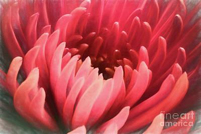 Digital Art - Flower Dream by Mariola Bitner