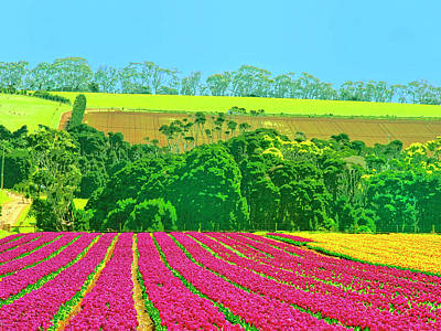 Flower Farm And Hills Print by Dominic Piperata