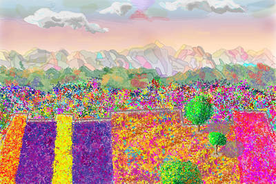 Photograph - Flower Fields by John Orsbun