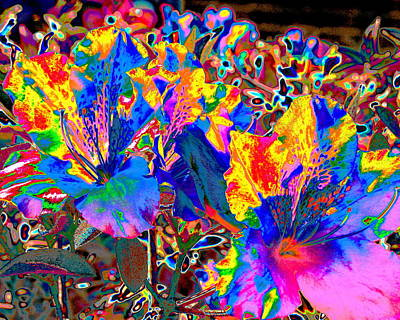 Digital Art - Flower Fireworks by Larry Beat