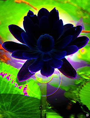 Blooming Digital Art - Flower For The Blues by David Lee Thompson
