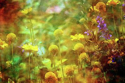 Flower Garden 1310 Idp_2 Art Print