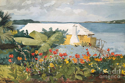 Flower Garden And Bungalow, Bermuda, 1899  Art Print by Winslow Homer