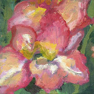Painting - Flower Gladioli by Kathleen Barnes