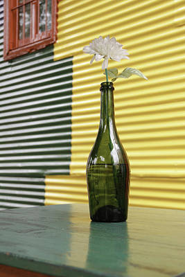 Photograph - Flower In A Bottle by Silvia Bruno