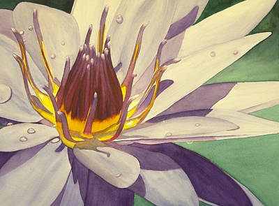 Wall Art - Painting - Flower In The Pond by Terry Arroyo Mulrooney