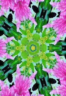 Digital Art - Flower Kaleidoscope by D Hackett