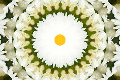 Colorful Photograph - Flower Mandala - A by Anthony Rego