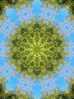 Flower Mandala 35 Art Print