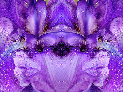 Photograph - Flower Mirrored - 0363d by Paul W Faust - Impressions of Light