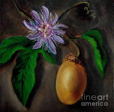 Passion Flower Vine Painting - Flower Of Christ by Randy Burns