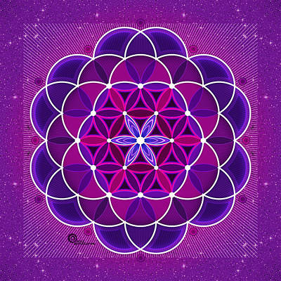 Digital Art - Flower Of Life by Soul Structures