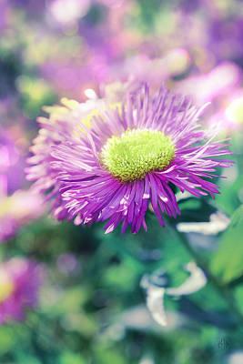 The Sakura Photograph - Flower Of Summer by Irina Effa