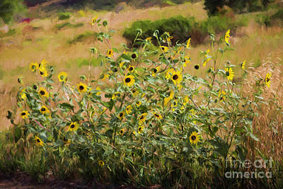 Flower Or Weed? Art Print by Jon Burch Photography