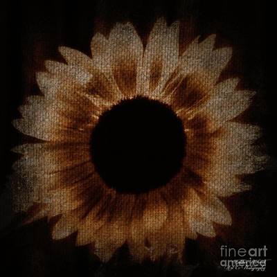 Photograph - Flower Painting Digitally by Bobbee Rickard