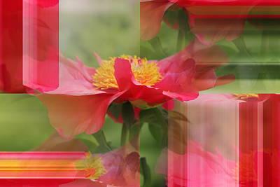 Mixed Media - Flower Petals Abstract by Kathleen Sartoris