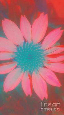 Digital Art - Flower Pop 1 by Rachel Hannah