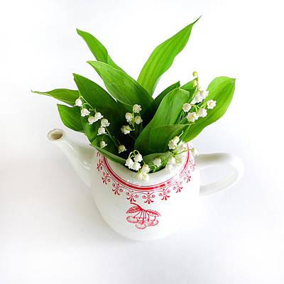 Photograph - Flower Pot by Colleen VT