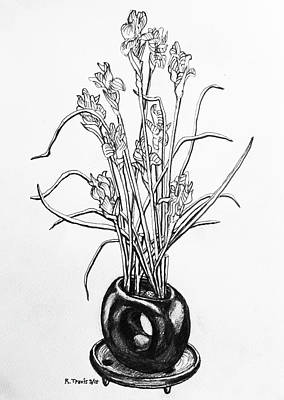 Drawing - Flower Pot by Rich Travis