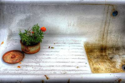 Photograph - Flower Pot And Sink by Randy Pollard