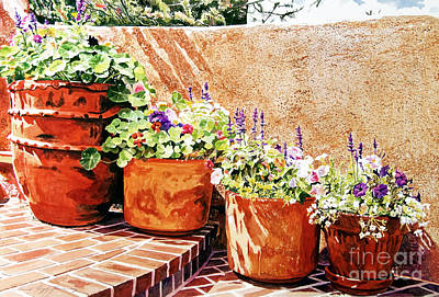 Painting - Flower Pot Steps by David Lloyd Glover