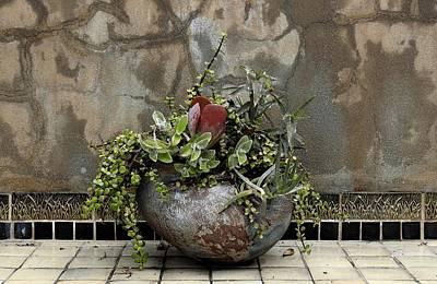 Flower Pot Art Print by Viktor Savchenko