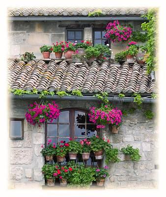 Flower Pots In Windows In Arles Art Print by Carson Ganci