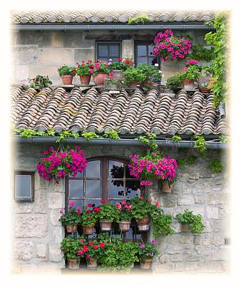 Flower Pots In Windows In Arles Art Print
