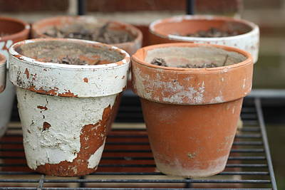 Photograph - Flower Pots With Texture by Joseph Skompski