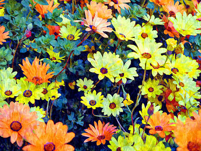 Photograph - Flower Power by Glenn McCarthy Art and Photography