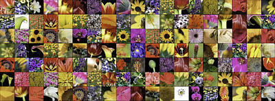 Quilt Collage Photograph - Flower Power Pano by Janet Fikar