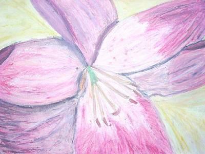 Flower Pastel - Flower by Samantha  Howe