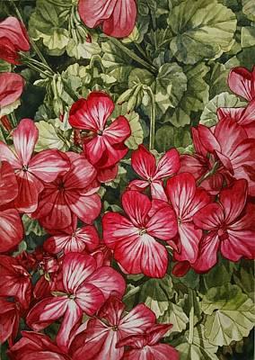 Flower Shot Art Print by Hsin Tseng