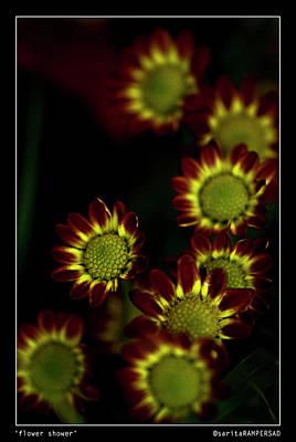 Photograph - Flower Shower by Sarita Rampersad