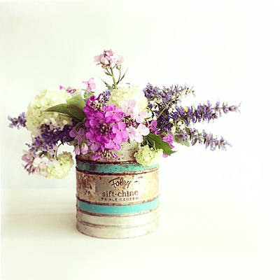 Photograph - Flower Sifter by Colleen VT