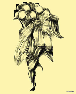 Digital Art - Flower Sketch Miniature by Michael Canning