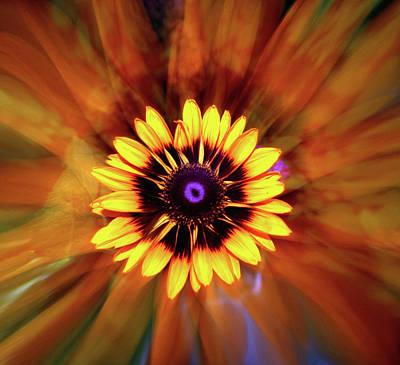 Photograph - Flower Spin by Linda Sannuti