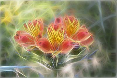 Flower Streaks Art Print by Carol Crisafi