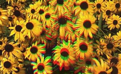 Edit Photograph - Flower Trip by Annie Walczyk