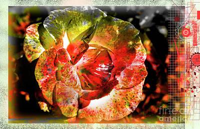 Digital Art - Flower Vector by Deborah Nakano